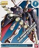 Bandai 1/100 MG XM-X1 Crossbone Gundam X-1 Full Cross Extra Finish