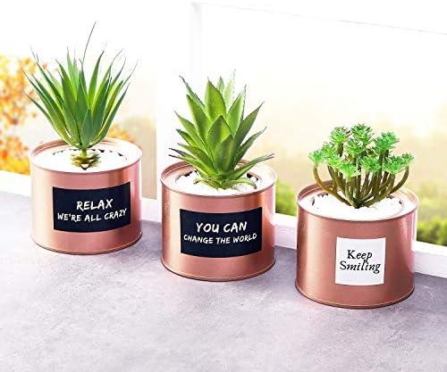 Artificial Succulent Plants for Women Desk – Fake Succulent Plant Set – Office Decor Faux Succulents in Rose Gold Pots – Mini Succulent Decor for Bedroom Bathroom Bookshelf Dorm Accessories 3-Pack 51zeQVgOftL
