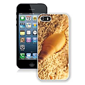 Designer Conch Shell Iphone 5s Case White Iphone 5 Mobile Phone Protective Cover