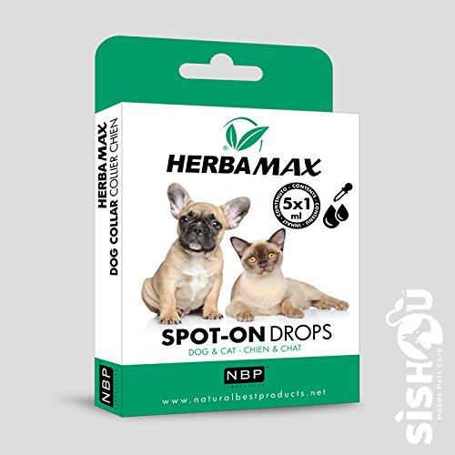 Natural Best Products herbamax Spot-on Drops/pipetas Perro Gato 5 x 1ml: Amazon.es: Productos para mascotas