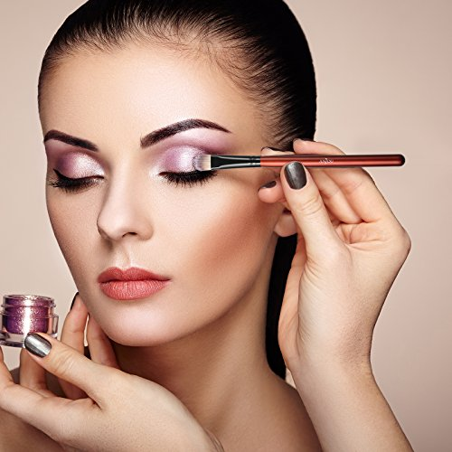 Anjou Makeup Brushes, 24 Pieces Professional Eye Makeup Cosmetics Brush Set, Eyeliner, Eye Shadow, Eye Brow, Foundation, Powder Liquid Cream Blending Brush, Premium Wooden Handles