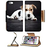 Luxlady Premium Apple iPhone 6 Plus iPhone 6S Plus Flip Pu Leather Wallet Case IMAGE 20387867 Jack russell puppy isolated on black background Studio shot