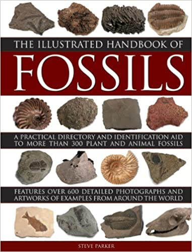 The Illustrated Handbook Of Fossils: A Practical Directory And Identification Aid To More Than 300 Plant And Animal Fossils Downloads Torrent