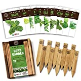 Herb Garden Seeds for Planting - 10 Culinary Herb Seed Packets Kit, USDA Certified Organic Seeds Non GMO Heirloom, Plant Markers, Wood Gift Box - Gardening Gifts for Gardeners