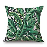 Slimmingpiggy 20 X 20 Inches / 50 By 50 Cm Plant Pillow Shams,2 Sides Is Fit For Couples,dinning Room,study Room,bar,kitchen,bf