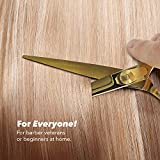 Equinox Professional Razor Edge Series Barber Hair