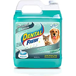 SynergyLabs SYNERGY LABS 369043 Dental Fresh for Dog and Cat, 1-Gallon