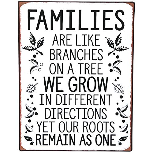 NIKKY HOME Inspirational Metal Wall Sign with Family Quote Vintage Tin Plaque ()