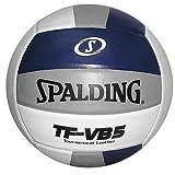 Spalding TF-VB5 Navy/Silver/White