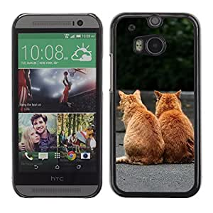Graphic4You Baby Cats Love Animal Design Hard Case Cover for HTC One (M8)