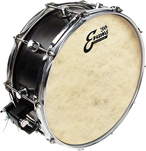 - Evans Calftone Tom Batter Drumhead, 14 Inch
