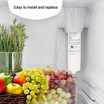 lyrlody Filtro de Agua del Refrigerador No Tóxico Seguro Limpiador ...
