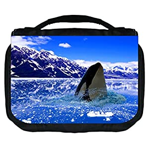 Polar Orca Killer Whale Rosie Parker Inc. TM Small Hanging Toiletry Case with 3 Compartments and Detachable Hanger
