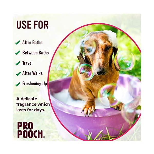 Pro Pooch Dog Perfume Spray (250ml). Baby Powder Scent. 5