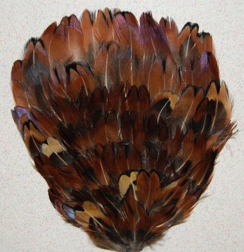 6 Pcs Pheasant Feather Pads - Natural Acorn (#P05)