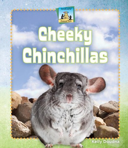Cheeky Mouse - Cheeky Chinchillas (Unusual Pets)