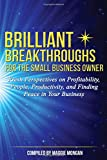 Brilliant Breakthroughs for the Small Business Owner: Fresh Perspectives on Profitability, People, Productivity, and Finding Peace in Your Business (Volume 1)