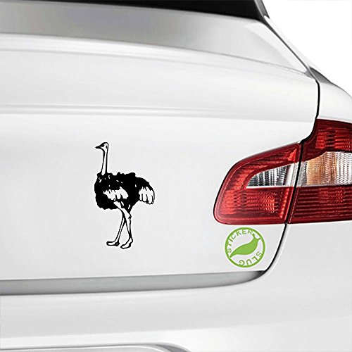Stickerslug Ostrich Decal (Gloss Black, 8 inch) for car Truck Window SUV Boat Motorcycle and All Other auto Glass and Bumper in Gloss Vinyl