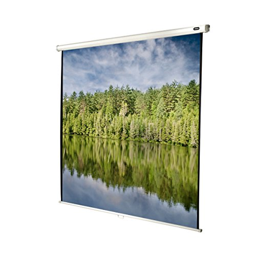 celexon 123'' Manual Economy 87 x 87 inches viewing area   1:1 format   Manual Pull Down Projector Screen   Wall or ceiling mounting   Gain factor of 1.0 for home cinema & business environments by Celexon