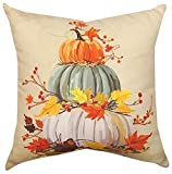 KensingtonRow Home Collection Decorative Pillows - Stack of Pumpkins Indoor Outdoor Pillow - 18' Square