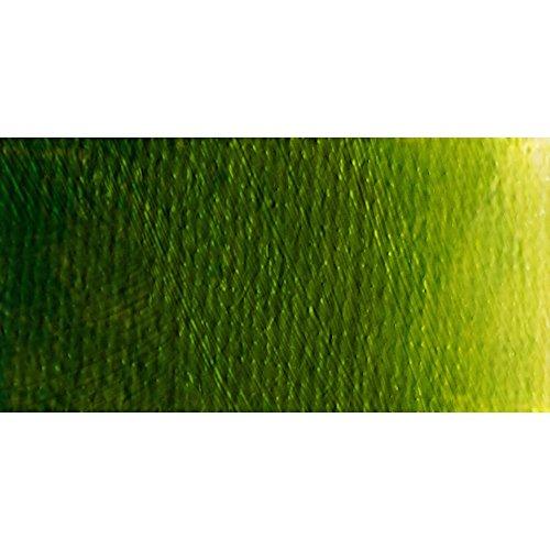 (Old Holland : Classic Oil Paint : 60ml : Golden Green Deep )