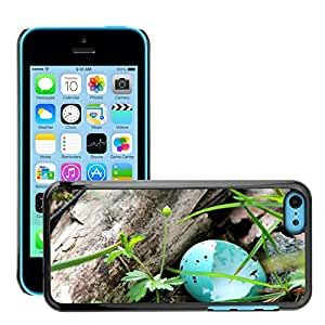GoGoMobile Slim Protector Hard Shell Cover Case // M00117935 Blue Eggs Measured Praised Hatched // Apple iPhone 5C