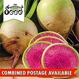 Radish - Watermelon (200 Seeds)