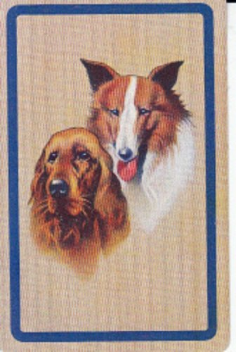 A Vintage Single Linen Swap Playing Card Collie Dog Spaniel Dog