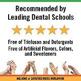 TheraBreath Fresh Breath Toothpaste fluoride Free