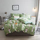 LuDan 3pcs Cactus Bedding Set Cartoon One Duvet Cover Without Comforter One Flat Sheet Two Pillowcases Twin Full Queen King for Kids Teens Happy Owl Forest Design (Green, Queen)