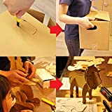 CANARY Corrugated Cardboard Cutter Dan Chan