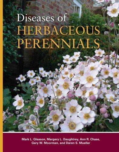 Herbaceous Perennial Plants - 5