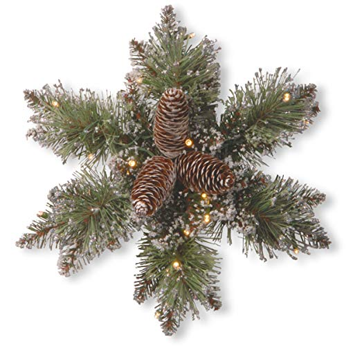 - National Tree 14 Inch Glittery Bristle Pine Snowflake with Cones and 15 Warm White Battery Operated LED Lights with Timer (GB1-300L-14SB-1)