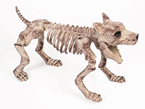 Forum Novelties 75463 Small Bone Skeleton Dog, (Plastic Halloween Dog Skeleton)