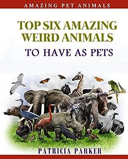 Weird Animals Pets 2