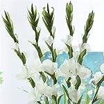99Cm-6-Heads-Artificial-Gladiolus-Decor-Home-Garden-Wedding-Flower-Fake-PlantRed