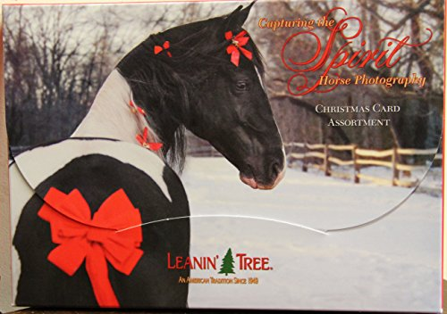 Christmas Tree Photo Card (LEANIN' TREE CAPTURING THE SPIRIT DESIGN CHRISTMAS CARDS MADE in USA by Leanin' Tree)