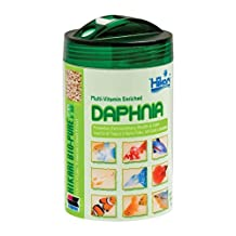 Hikari Bio-Pure Freeze Dried Daphnia for Pets, 0.42-Ounce