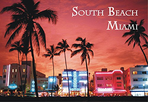 South Beach, Miami, Florida, Miami Beach Souvenir Magnet 2 x 3 Photo Fridge - Miami Airport Pictures Of