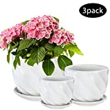 Flower Pot, OAMCEG Round Modern Plant Pot Small to Medium Sized, Ceramic Garden Plants Containers/Succulent Pots with Drainage Hole,White Twill 3 Pack