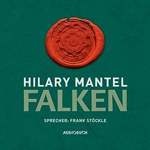 Falken Audiobook