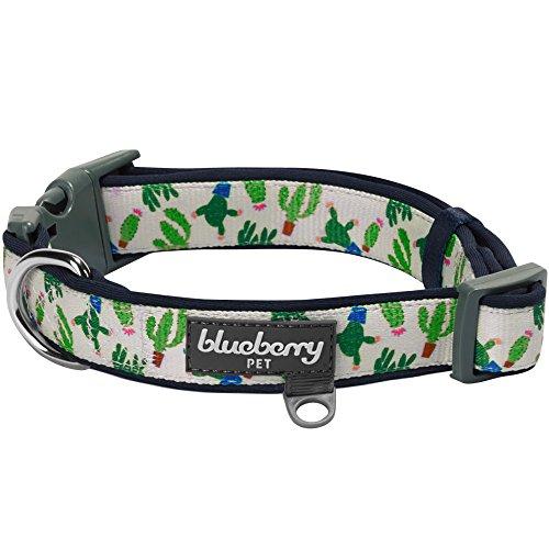Blueberry Pet 4 Patterns Soft & Comfy Ever-lasting Latin Spirit Inspired Green Cactus Padded Dog Collar, Medium, Neck 14.5