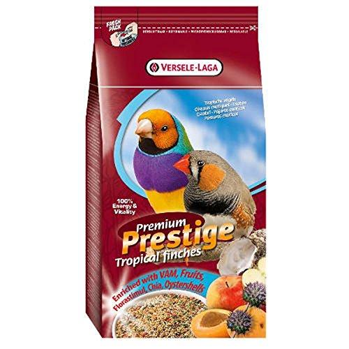 Premium Prestige Pájaros exóticos 1 kg: Amazon.es: Jardín