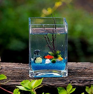 Jiangu Mini pecera, pecera de cristal cuadrado, pecera creativa, pecera de escritorio, pecera ecológica, tanque de algas