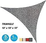 AsterOutdoor Sun Shade Sail Triangle 10' x 10' x