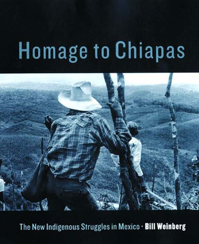 homage-to-chiapas-the-new-indigenous-struggles-in-mexico