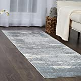 Home Dynamix and Christian Siriano |Brooksville Langley Runner | Plush Polyester Indoor Rug | Modern Style, Designer Fashion | Plush, Soft, Comfy | Blue,2'x7'