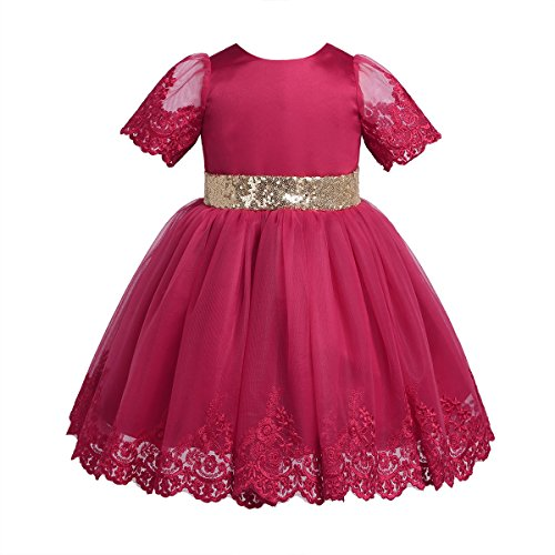 Agoky Baby Flower Girls Floral Embroidered Christening Baptism Formal Ball Gown Dress Burgundy Sequined 9-12 ()