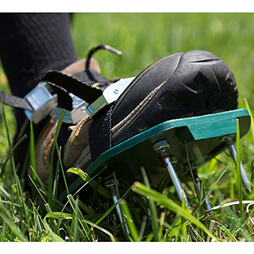 Punchau Lawn Aerator Shoes w/Metal Buckles and 3 Straps - Heavy Duty Spiked Sandals for Aerating Your Lawn or Yard by Punchau (Image #2)