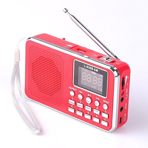 Mfine Portable Speaker AM/FM Radio Music Player Micro SD/TF Card For PC iPod Phone (938B -